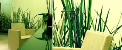 grass tapete